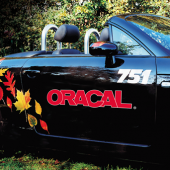 "Oracal Vinyl - 15"" 751C High Performance Cast"